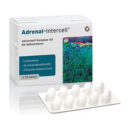 ADRENAL-INTERCELL® INTERCELL 120 KAPSUŁEK