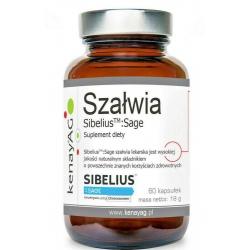 SZAŁWIA EKSTRAKT 2,5%  SibeliusTM Sage  60 Kapsułek